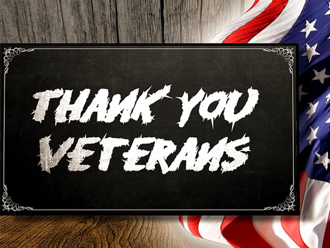 Spotlight Newsletter Image Template_veterans day